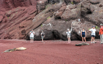 Tours a las Islas Galápagos junio 2018