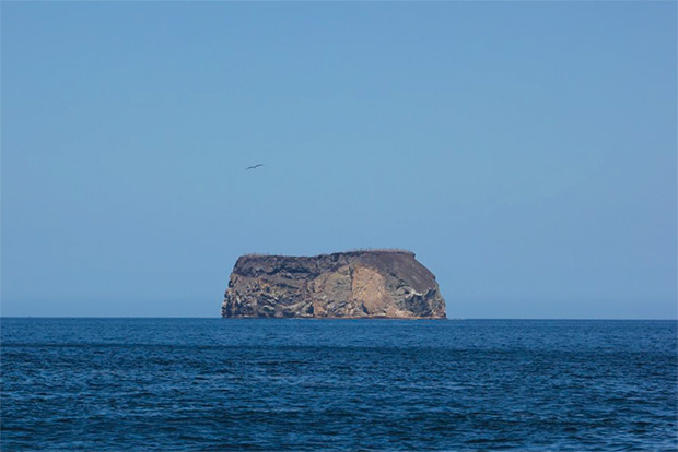 Tours a las Islas Galápagos octubre 2020