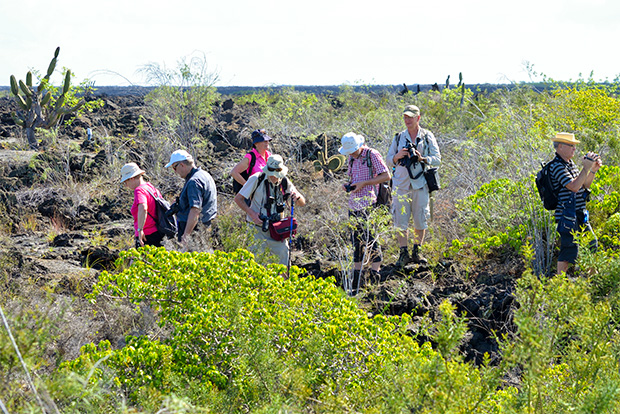 Vacation Packages to Galapagos Islands August 2020