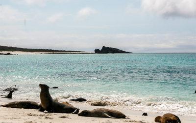 Croisières aux Îles Galápagos en Avril