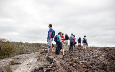 Croisières aux Îles Galápagos en Janvier