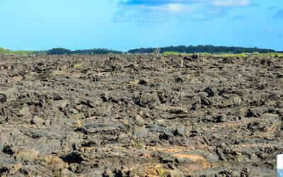 Croisières aux Îles Galápagos en Octobre