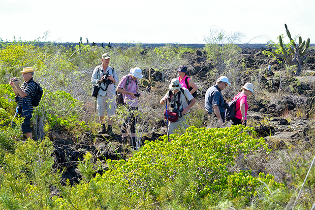Cruises to the Galapagos Islands for 16 people December 2017