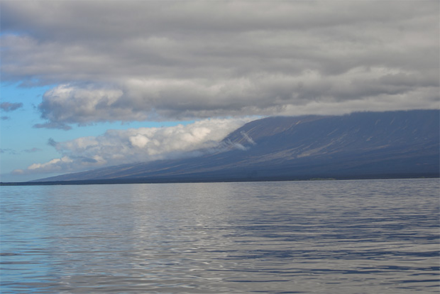 Cruises to the Galapagos Islands for 8 people December 2017
