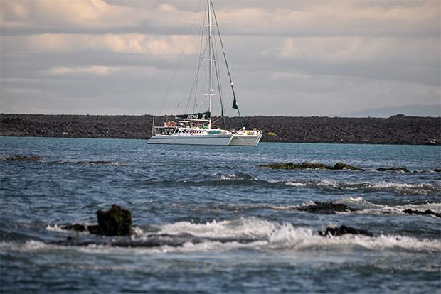 Study Tour to the Galapagos Islands November 2017
