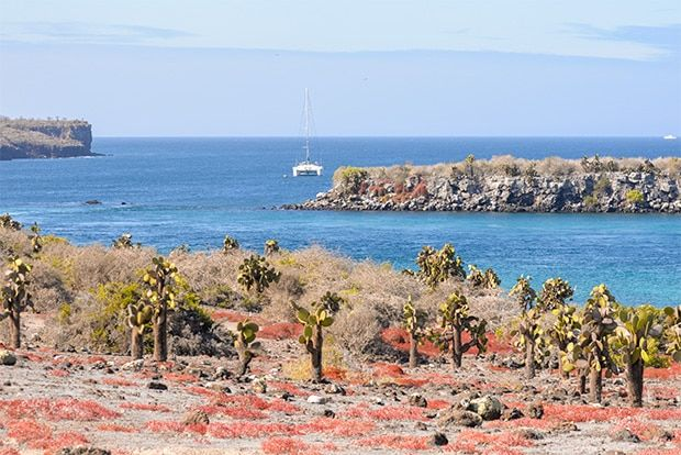 Cruise to the Galapagos Islands from Costa Rica