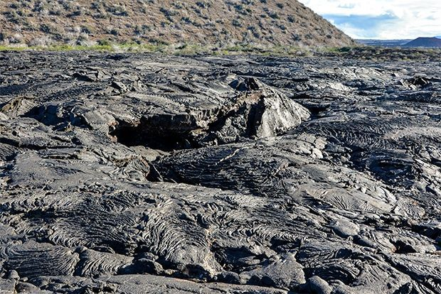 Cruise to the Galapagos Islands from El Salvador