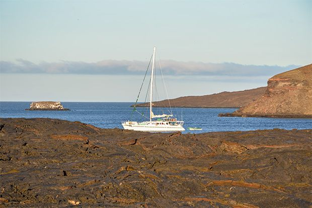 Cruise to the Galapagos Islands from Netherlands