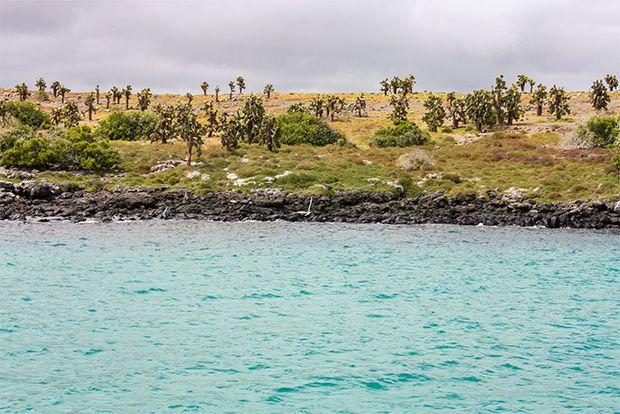 Cruise to the Galapagos Islands from Tajikistan