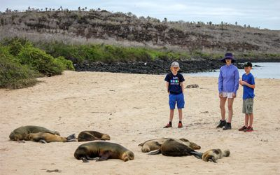 Cruises to Galapagos Islands in New Year