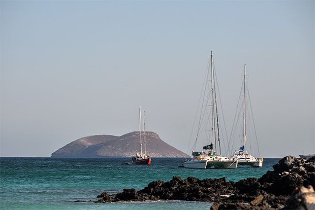 Cruises to Galapagos Islands in November