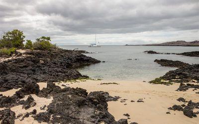 Tourism to Galapagos Islands at Christmas