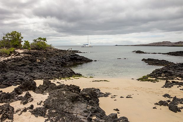 Tourism to Galapagos Islands at Christmas