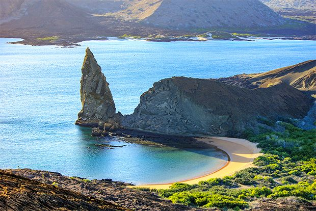 Travel in Cruise to Galapagos Islands in Summer