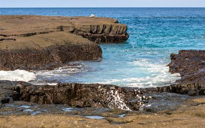 Travel on Cruise to Galapagos Islands for next week