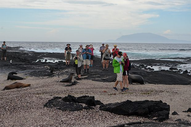 Cruises to the Galapagos Islands for 12 people January 2018