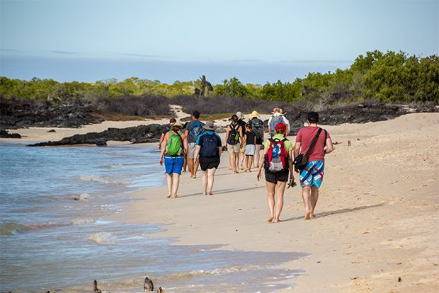 Last minute offers to Galapagos Islands January 2018