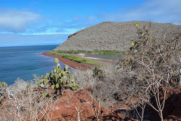 The Best Cruise in the Galapagos Islands 2018
