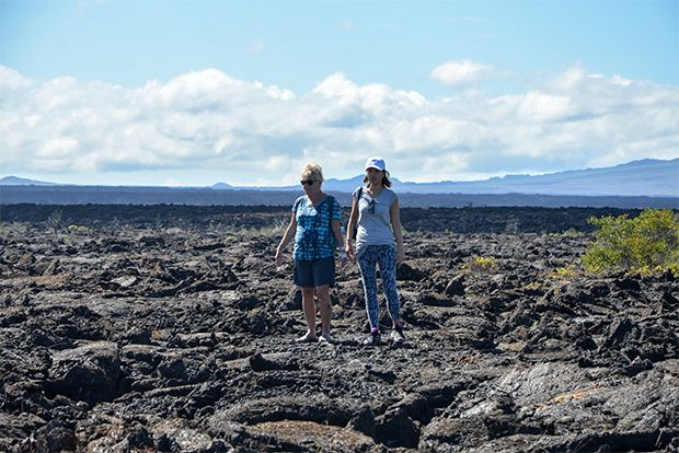Values and Costs Cruises to the Galapagos Islands 2018