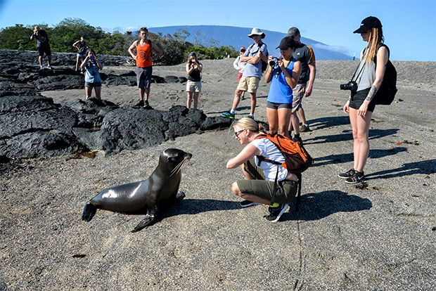 Cruises to the Galapagos Islands for 13 people June 2018