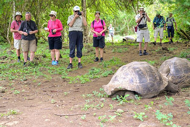 Cruises to the Galapagos Islands for 2 people May 2018