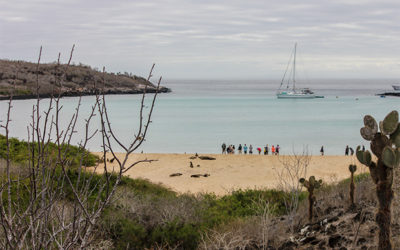 Cruises to the Galapagos Islands for 6 people June 2018