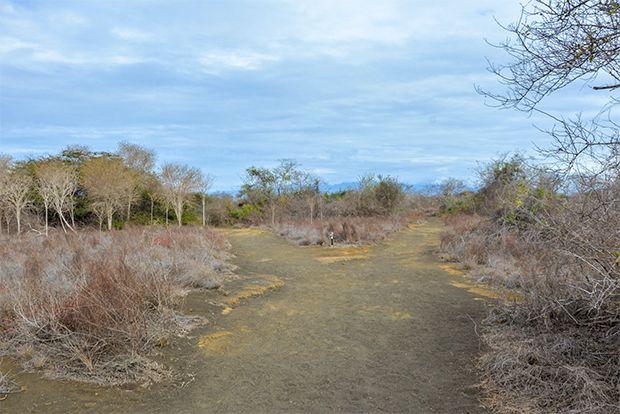 Holidays to the Galapagos Islands May 2018