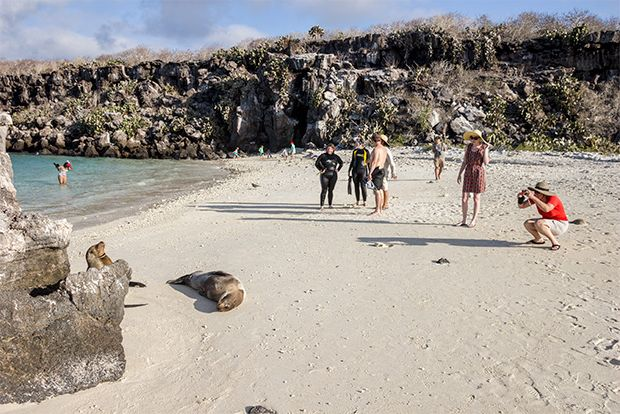 Offer Cruises to the Galapagos Islands March 2018