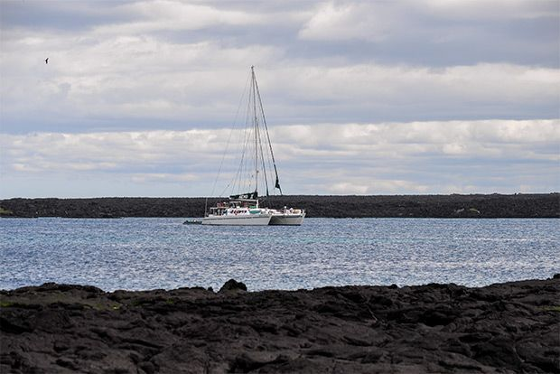 Tour Packages to the Galapagos Islands April 2018