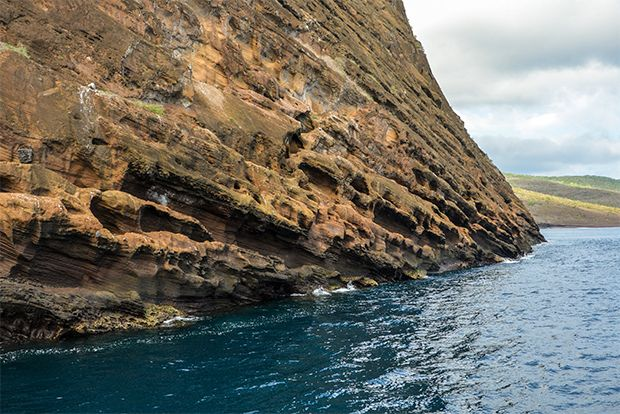Tour Packages to the Galapagos Islands March 2018