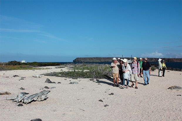 Cruises to the Galapagos Islands for 15 people July 2018