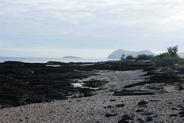 Cruises to the Galapagos Islands for 3 people October 2018