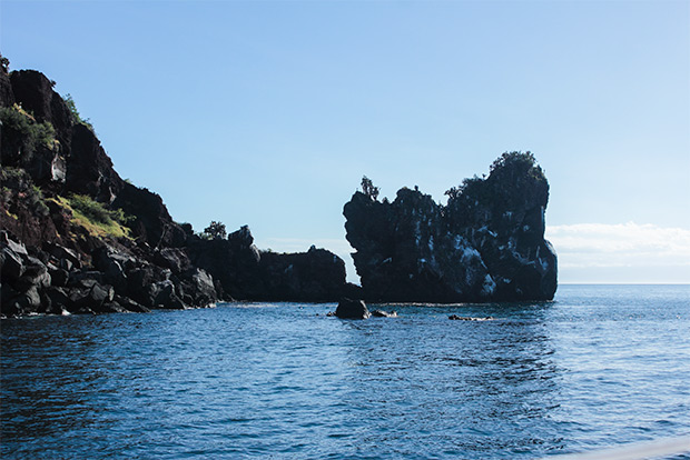 Cruises to the Galapagos Islands for 4 people October 2018