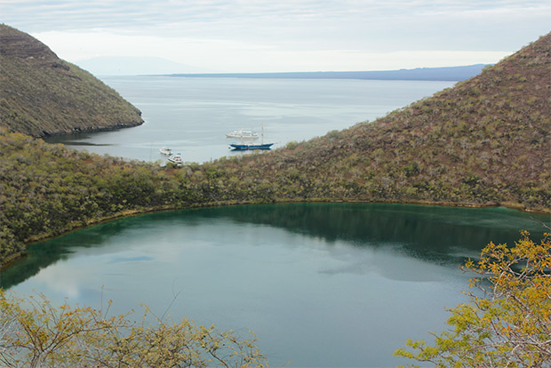 Cruises to the Galapagos Islands for 7 people September 2018