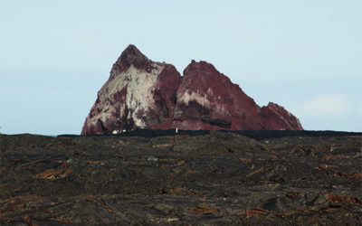 Cruises to the Galapagos Islands for 8 people October 2018
