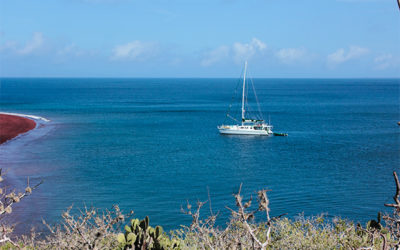 Offer Cruises to the Galapagos Islands October 2018