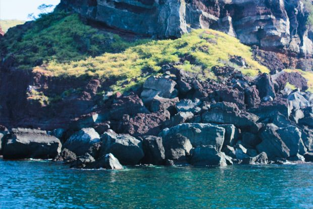 Romantic cruises to the Galapagos Islands September 2018