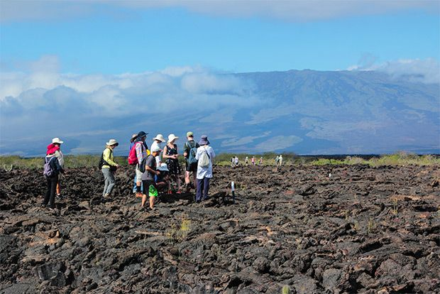 Tour Packages to the Galapagos Islands August 2018