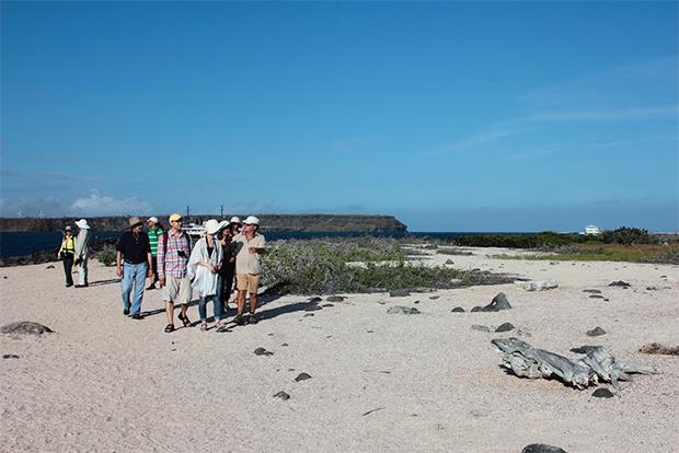 Cheapest Way to Travel to Galapagos Islands - GalapagosInformation.com Blog