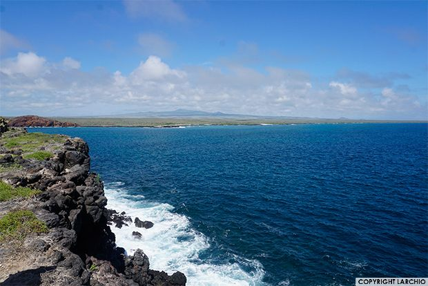 Last Minute Cruise Deals >> Last Minute Galapagos Cruise Deals Galapagosinformation