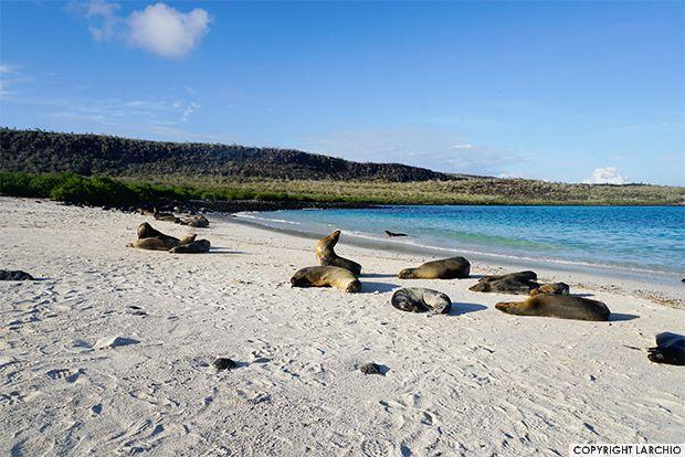 Location Galapagos Islands World Map Galapagosinformation