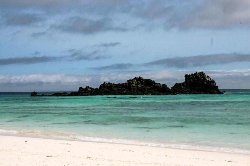 Española: Gardner Bay Galapagos Island