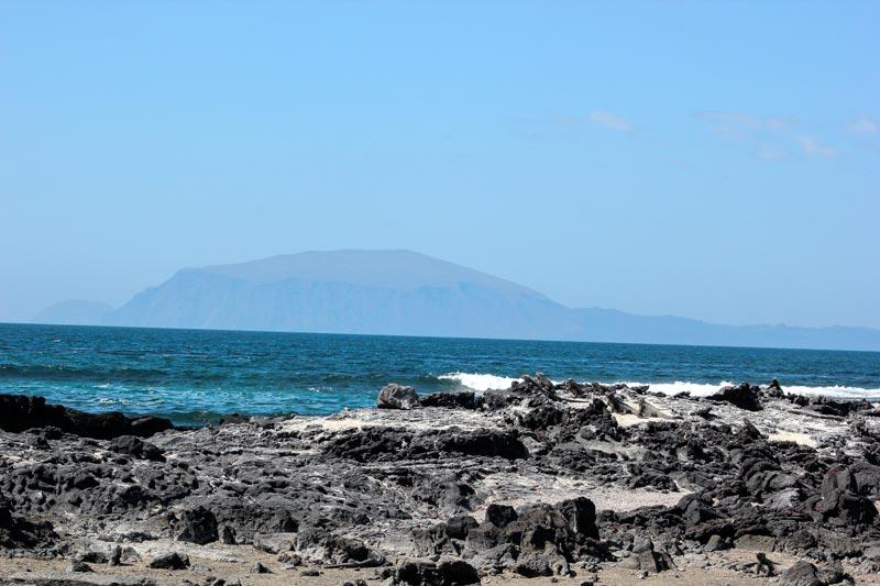 Fernandina: Espinoza Point Galapagos Island
