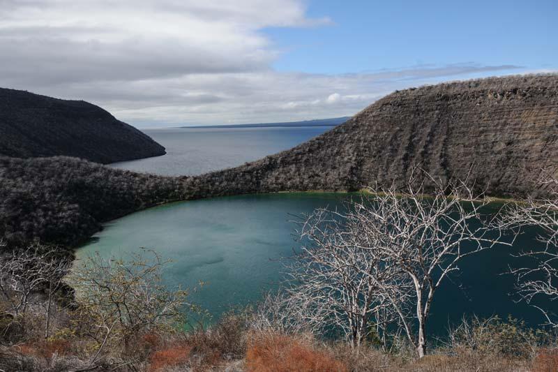 Isabela: Tagus Cove Galapagos Island