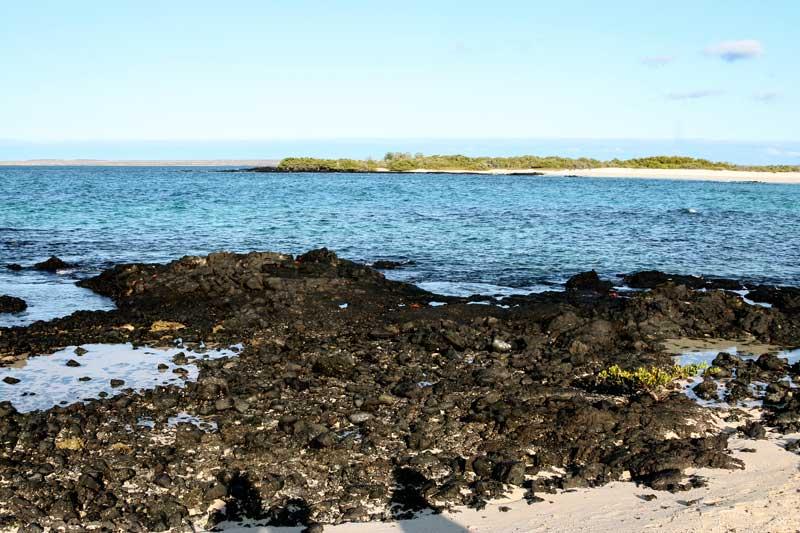 Santa Cruz: Las Bachas Beach Galapagos Island