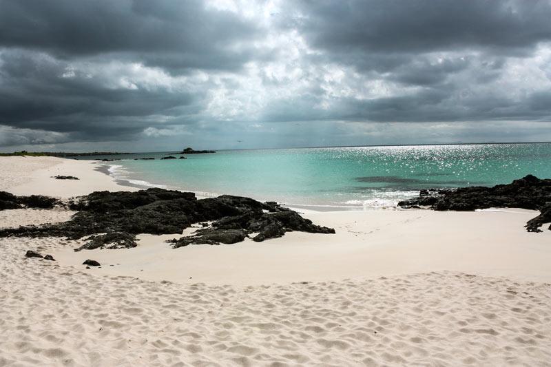 Santa Cruz: Bachas Beach Galapagos Island