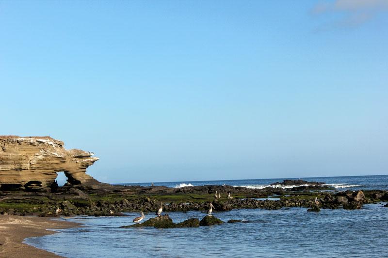 Santiago: Egas Port Galapagos Island