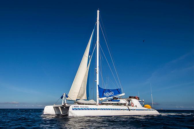 Galapagos Islands Cruises 2018 Luxury Cruises To