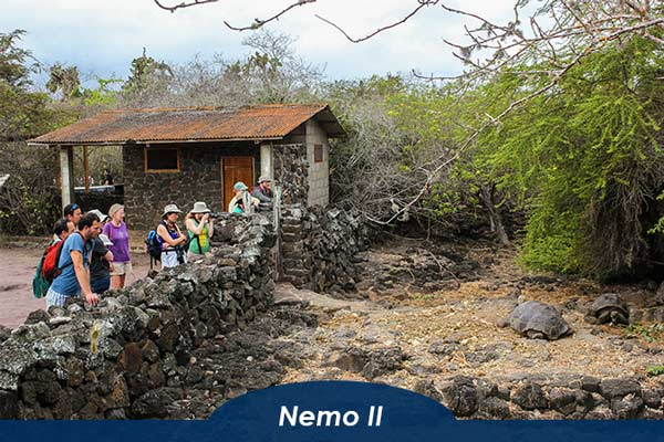 Tour on Nemo II Galapagos Cruise