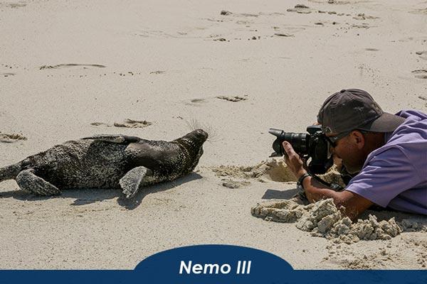 Tour on Nemo III Galapagos Cruise